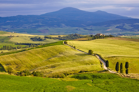 san quirico: Countryside, San Quirico d`Orcia , Tuscany, Italy