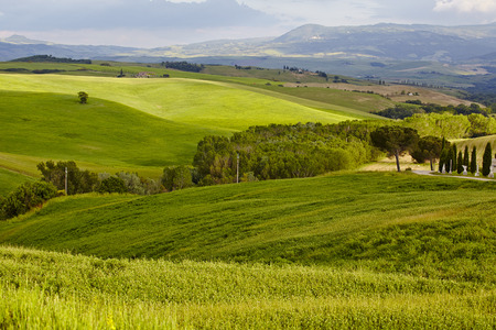 agriturismo: Countryside, San Quirico d`Orcia , Tuscany, Italy