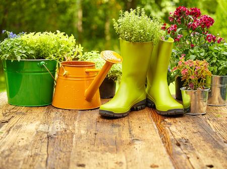 jardines con flores: Herramientas de jardiner�a al aire libre en la mesa de madera vieja
