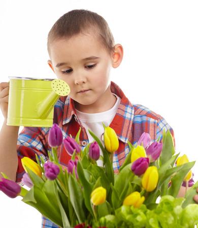 Little gardener boy, isolated on white photo