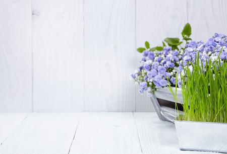 Gartengeräte Hintergrund Standard-Bild
