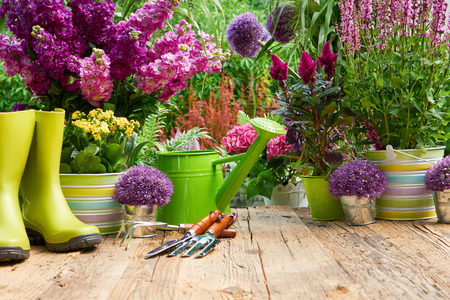 home garden: Gardening tools and flowers  on the terrace in the garden Stock Photo