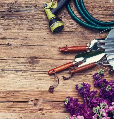herramientas de trabajo: vista superior de herramientas de jardinería acostado en la terraza