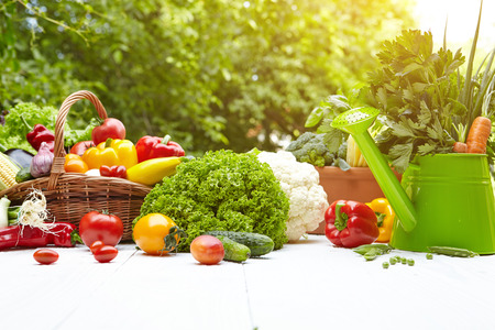 Fresh organic vegetables and fruits on wood table in the garden Imagens
