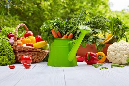Frische Bio-Gemüse und Früchte auf Holztisch im Garten Standard-Bild - 41915453