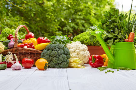 Fresh organic vegetables and fruits on wood table in the garden Stock Photo