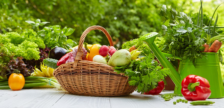Fresh organic vegetables and fruits on wood table in the garden Stockfoto