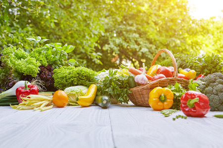 farms: Fresh organic vegetables and fruits on wood table in the garden Stock Photo