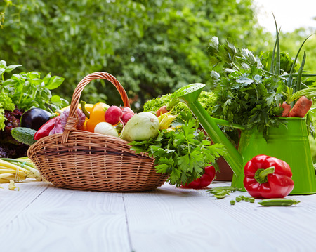 fruits in a basket: Fresh organic vegetables and fruits on wood table in the garden Stock Photo