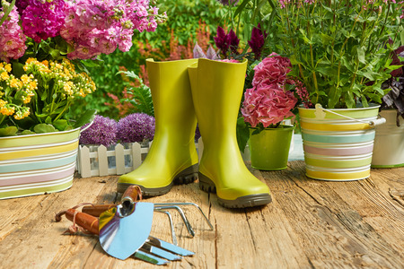 pottery: Gardening tools and planting  flower
