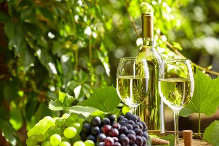 bouteille de vin: Raisin et du vin blanc sur le baril en bois sur la terrasse de jardin Banque d'images