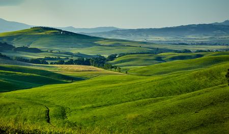podere: Tuscany hills