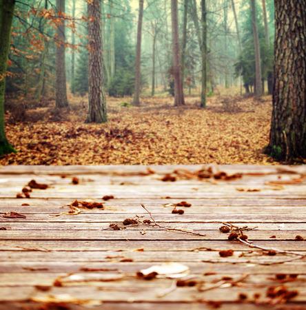 decoracion mesas: otoño de antecedentes