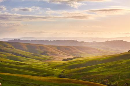 farm field: Green Tuscany hills