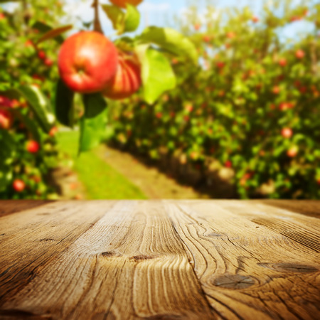 table space and apple garden of trees and fruits Banque d'images