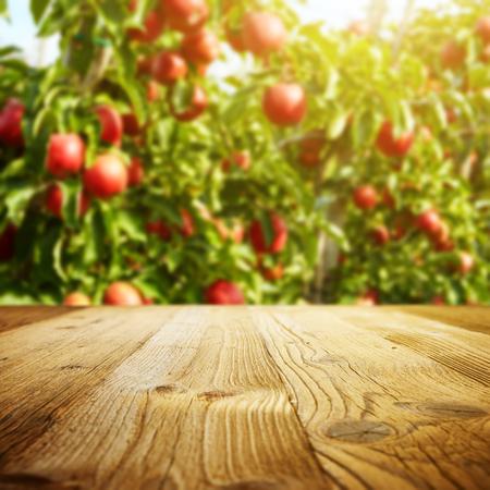 tabel ruimte en appel tuin van bomen en vruchten Stockfoto