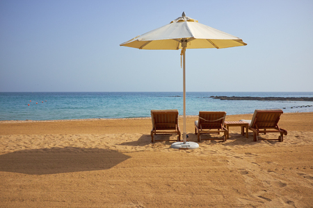 loungers: empty sun loungers on the beach