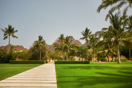 resort: Way to beach in tropical resort.