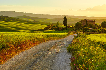 agriturismo: Early morning on countryside