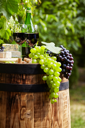 Bottle of red wine with wineglass and grapes in garden