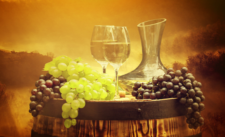 food still: Wine and vineyard in Tuscany sunset. Italy Stock Photo