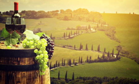 Red wine with barrel on vineyard in green Tuscany, Italy Stok Fotoğraf - 51802789