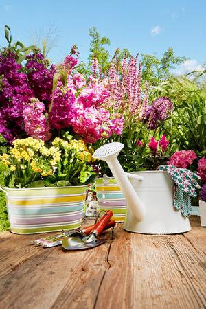 Gardening tools on the terrace in the garden Stockfoto