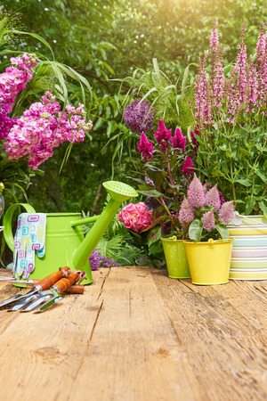 Gardening tools on the terrace in the garden Stock Photo