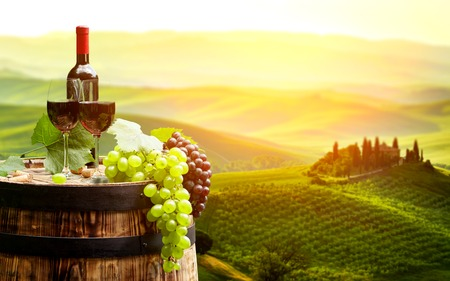 the tuscany: Red wine with barrel on vineyard in green Tuscany, Italy