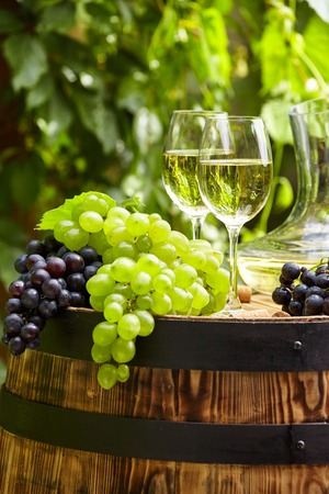 vine country: Grape and white wine on wooden barrel on garden terrace