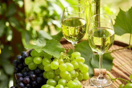 Grape and white wine on wooden barrel on garden terrace