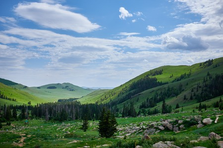 typically scottish: Green Mountain Landscape in Mongolia