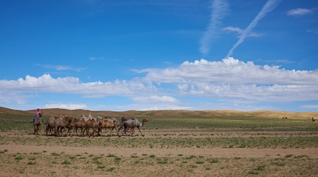 ger: nice typical Mongolian landscape of the yurt. Mongolian steppe Stock Photo
