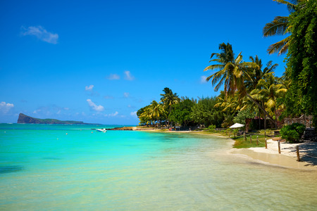 Beautiful amazing nature background. Tropical blue sun sea. Luxury holiday resort. Island atoll about coral reef. Fresh freedom. Adventure day. Snorkeling. Zdjęcie Seryjne