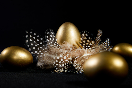 Creatively lit golden goose eggs in a real birds nest black background Stock Photo