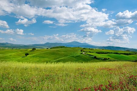 Picturesque Tuscany landscape with rolling hills, valleys, sunny fields, cypress trees along winding rural road, houses on a hill. Tourist visit in Tuscany