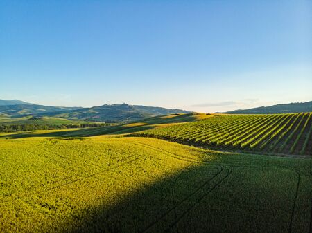 Typical landscape of the Val d'Orcia in Tuscany, Italy. Aerial view.