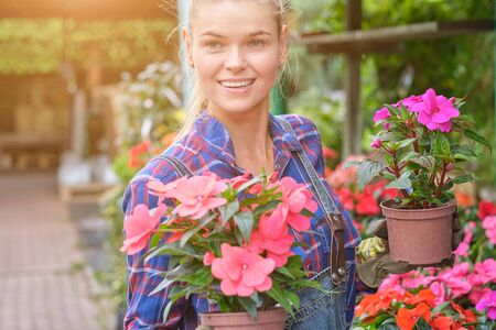 Young woman gardening in greenhouse.She selecting flowers.