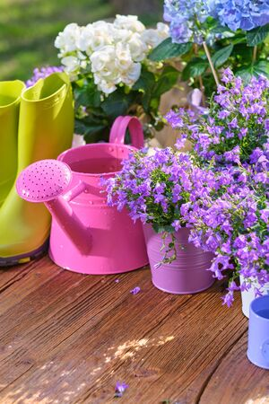 Gardening tools , can and flowers on the terrace in the garden
