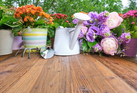 watering can and flower seedlings on a wooden table Archivio Fotografico
