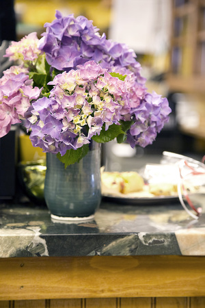 Hydrangea in Vase Stock Photo - 44885604