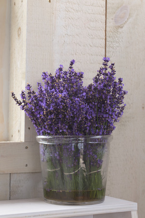 Flower - Lavender