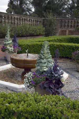 Tuin met fontein