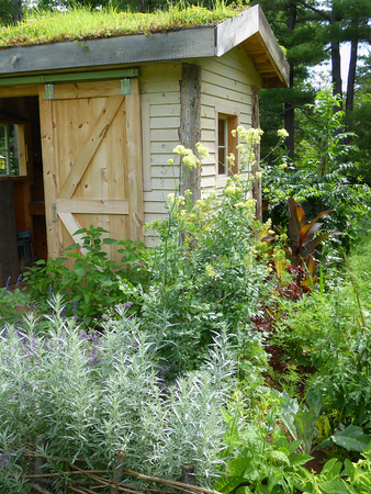 martha: Garden Shed with Roof Garden