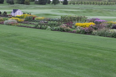 Garden - Guelph Turfgrass Institute Imagens