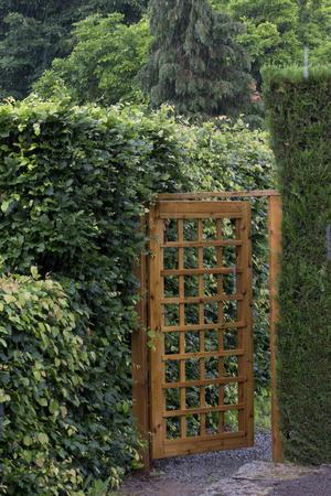 Houten tuinhek met gaas patroon te midden van de heggen