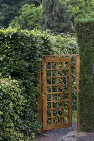 Wood Garden Gate With Mesh Pattern Set Among The Hedges Stock Photo,  Picture And Royalty Free Image. Image 45072868.