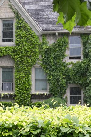 Groot huis bedekt met wijngaarden en omlijst door hedge