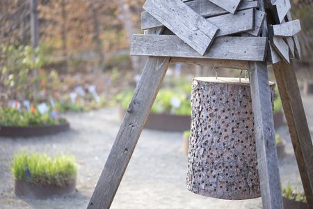 drilled: Insect hotel made out of a log with drilled holes Stock Photo