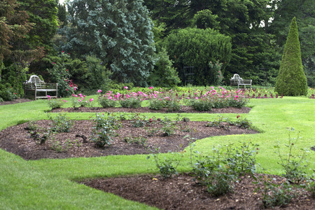 flowerbeds: Beautiful garden view with flowerbeds, hedges, grass, and path